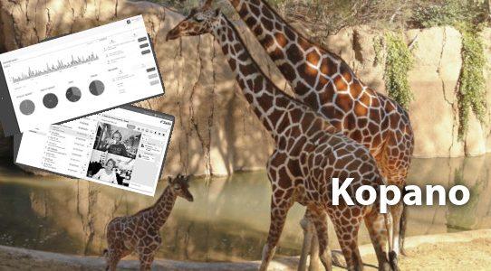 Kopano