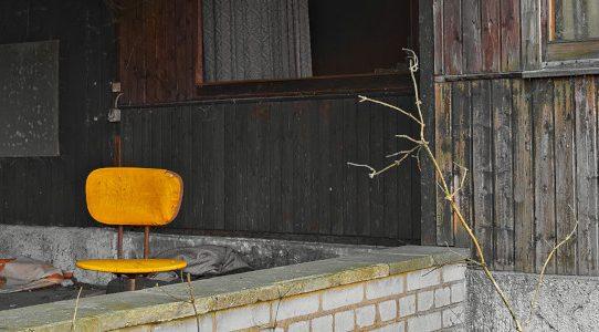 Die gelben Stühle des Dr. med. vet. Triesch