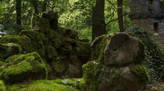 Geheimnisvolle Gräber im Wald