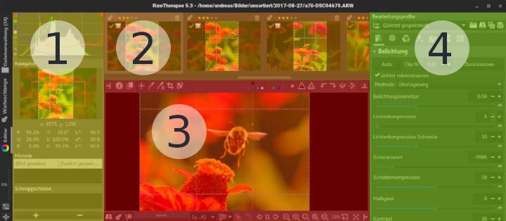 Die vier Arbeitsbereiche des RawTherapee-Editors